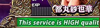 This service is HIGH quality